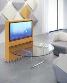 01S_Estel_Executive-&-Common-Area_Video-Meeting_Frame_Deck-Glass